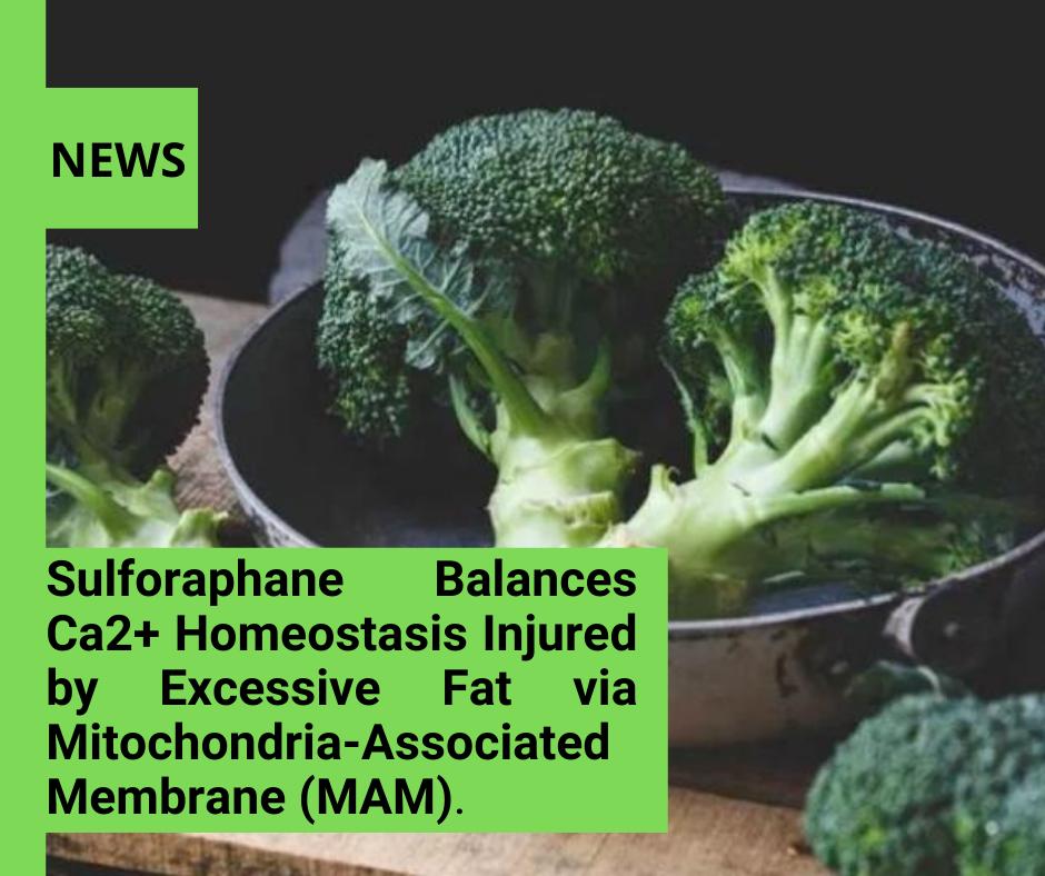 News 1 Polyphenols